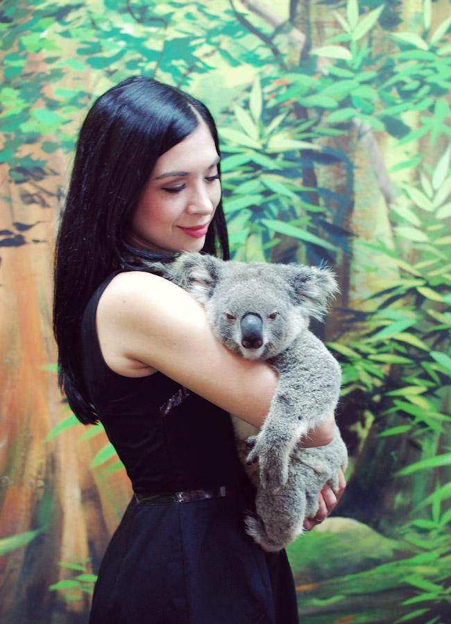 Nubby Twiglet | Koala Cuddle