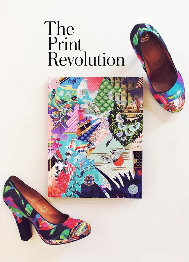 2013_lookbook_printrevolution_0
