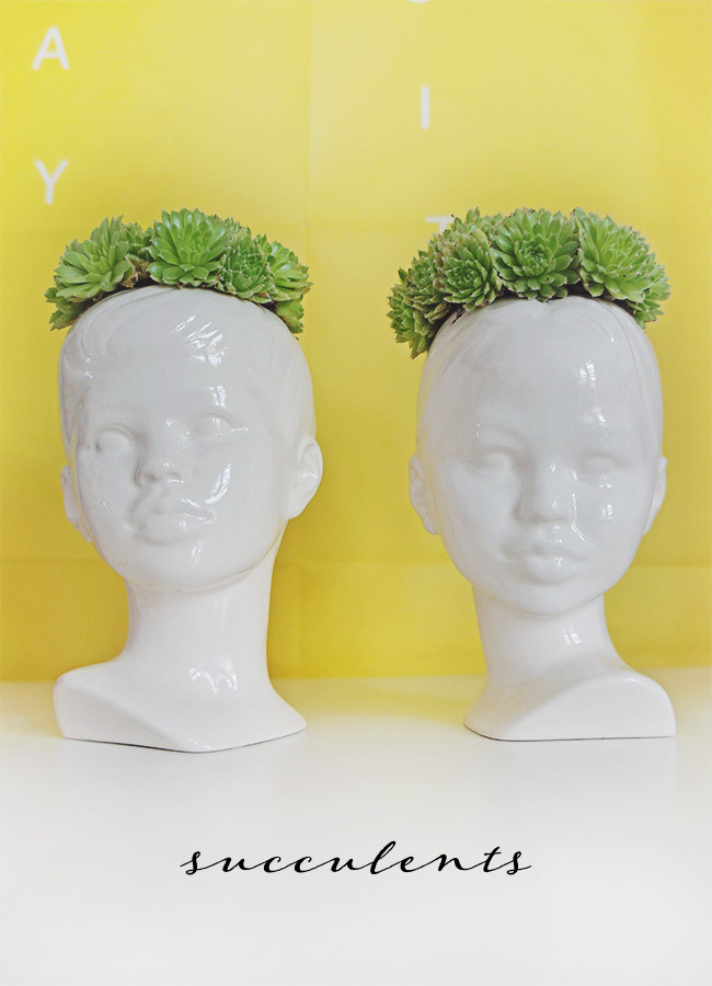 Nubby Twiglet   Succulents Paired With Unique Planters