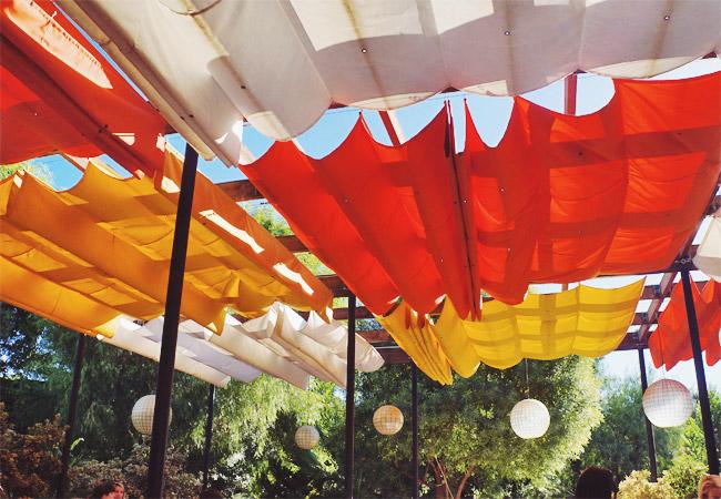 Nubby Twiglet   Palm Springs