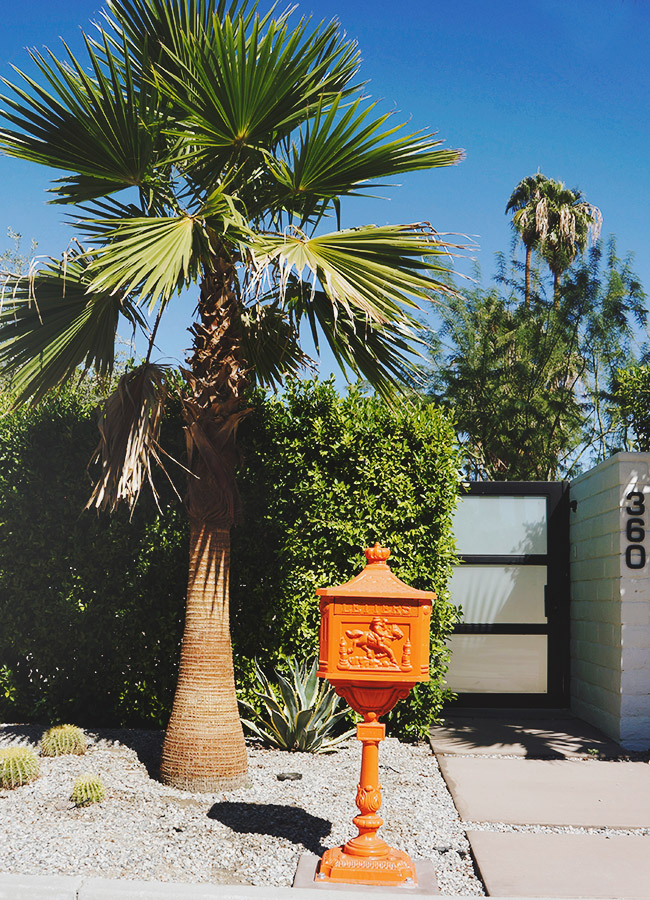 Nubby Twiglet   A Less-Traveled View Of Palm Springs Plus 10 Tips To Make The Most Of Your Stay