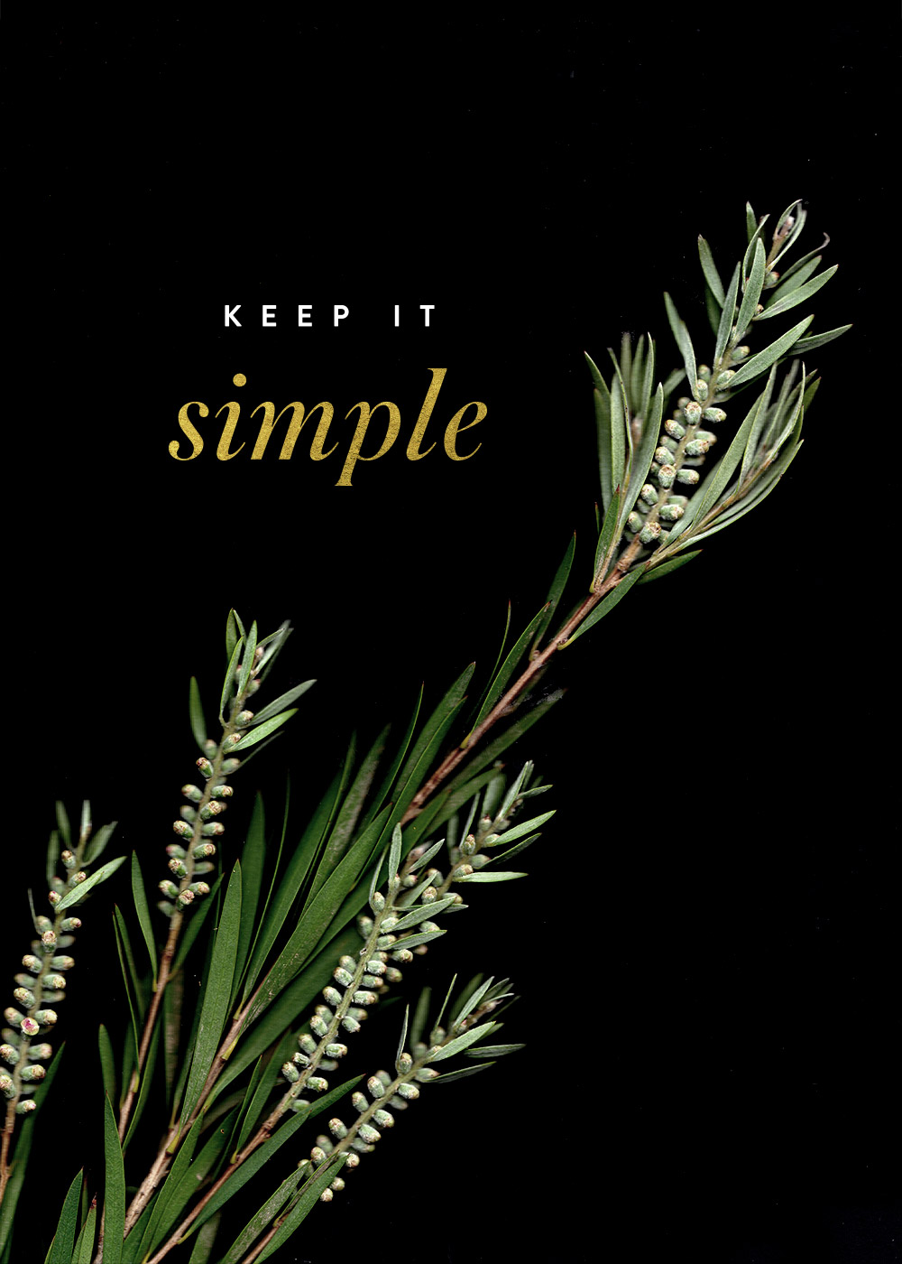 Nubby Twiglet | A Little Reminder: There's Beauty in Simplicity